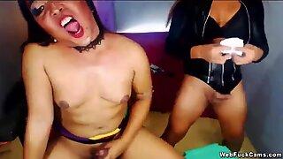 Lesbian shemales wanking on webcam